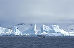 Antarctica;antarctic;Antarctic_Peninsula;Andvord_Bay;ecosystem;environment;glacial;ice;Icebergs;landscapes;scenery;scenic