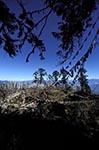 Bhutan;Bhutanese;Asia;Kingdom;Dochula;Dochula_Pass;Himalayas;mountainous;mountains;Pass;Phunaka_District