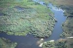 Africa;aerial;Okavango_Delta;North_West_District;Botswana;Botswanan