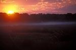 Africa;sunset;Okavango_Delta;North_West_District;Botswana;Botswanan