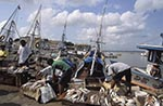 Brazil;Brazilian;Brasil;Latin_America;Belem_do_Para;boats;dock;fisherman;fishermen;fishing_industry;jungle;Market;Para;transportation;tropical_rain_forest;Ver_o_Peso;vessels;Fishing