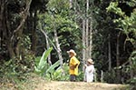 British_Virgin_Islands;Virgin_Islands;Caribbean;Antilles;couple;man;men;woman;women;person;people;female;forests;islands;male;man;men;people;person;tropical;United_Kingdom;West_Indies;woman;women;woodlands;Tortola;Sage_Mountain;National_Park