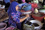 Brunei;Bruneian;Borneo;Southest_Asia;Asia;female;marketplaces;markets;merchants;people;person;persons;people;retailers;salespersons;sellers;shopping;vendors;woman;women;Bandar_Seri_Begawan;Brunei_Darussalam;Woman;vendor;market