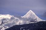 Canada;Canadian;North_America;Brackendale;winter;British_Columbia;Coast_Mountains