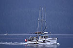 Canada;Canadian;North_America;fisherman;fishermen;fishing_industry;Vancouver_Island;British_Columbia;Fishing_boat;Johnstone_Strait