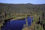 Canada;Canadian;North_America;Arctic;Dempster_Highway;fall;North_West_Territories;Northwest_Territories;Ogilvie_Mountains;Taiga_forest;Lake