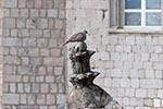 Croatia;Croatian;Europe;Eastern_Europe;Balkans;Europa;Pigeon;Dubrovnik;Dubrovacko_Neretvanska;Architecture;Art;Art_history;Balkan_Peninsula;UNESCO;World_Heritage_Site;Yugoslavia