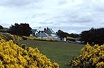 Falkland_Islands;Falklands;Islas_Malvinas;Malvinas;South_America;_United_Kingdom;British;Argentina;Government_House;islands;Stanley;sub_Antarctic