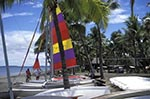 Fiji;Fijian;Melanesia;South_Pacific;Oceania;beach;islands;Nadi;recreations;Regent_Resort;sports;tropical;Western_Province;Windsurfers