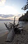 India;Indian;Indian_Subcontinent;Asia;South_Asia;Bharat;Andaman;Andaman_Islands;Beach;Chiriya_Tapu;Indian_Ocean;islands;stump;sunset;Tree;tropical