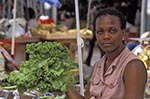 Martinique;Martiniquais;Martinican;Fort_de_France;Antilles;Caribbean;female;people;person;persons;tropical;West_Indies;woman;woman;women;female;person;people;women;Lettuce;vendor;market