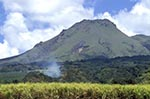 Martinique;Martiniquais;Martinican;Saint_Pierre;Caribbean;West_Indies;Antilles;tropical;volcano;volcanoes;volcanic;Depaz;sugar_cane;plantation;Mont_Pelée