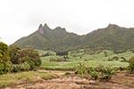 Africa;islands;Maurice;Mauritian;Mauritius;Montaigne_Bambous;plantations;Sugar_cane;tropical;UNESCO;World_Heritage_Site