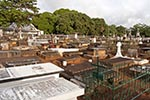 Mauritius;Maurice;Mauritian;Africa;burial_grounds;cemeteries;cemetery;graveyards;islands;Pamplemousses;tropical