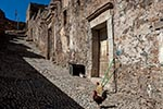 Mexico;Mexican;Latin_America;North_America;Central_America;Street_scene;street;rooster;Real_de_Catorce;San_Luis_Potosi