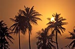 Mexico;Mexican;Latin_America;North_America;Central_America;Barra_de_Cazones;Palms;sunset;Veracruz