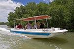 Mexico;Mexican;Latin_America;North_America;Central_America;boats;vessels;transportation;Boat;mangroves;Celestun;Yucatan;Boat;mangroves;Celestún;Yucatan;Mexico