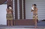 New_Zealand;South_Pacific;Oceania;female;male;man;Maori;men;North_Island;people;New_Zealanders;person;persons;people;New_Zealanders;woman;women;Rotorua;Bay_of_Plenty;Maori;men