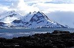 South_Georgia;Antarctic;Antarctica;sub_Antarctic;ecosystem;environment;landscapes;polar;Salisbury_Plain;Albatross_Island;scenery;scenic