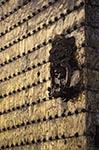 Andalucía;Architecture;Art;Art_history;Bronze;Córdoba;door;España;Historic_Centre_of_Córdoba;Islamic;Mediterranean;Mezquita_de_Córdoba;Mosque;mosque;Muslim;UNESCO;World_Heritage_Site;Andalusia;España;Spain;Spanish;Europe;European