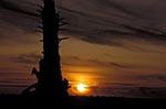 North_America;USA;USA;United_States_of_America;Americans;Oregon;United_States;Tillamook;Bay;sunset